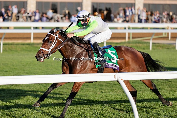 November 6, 2020: Aunt Pearl, ridden by Florent Geroux, wins the Juvenile Fillies Turf on Breeders' Cup Championship Friday at Keeneland on November 6, 2020: in Lexington, Kentucky. Matt Wooley/Eclipse Sportswire/Breeders Cup/CSM