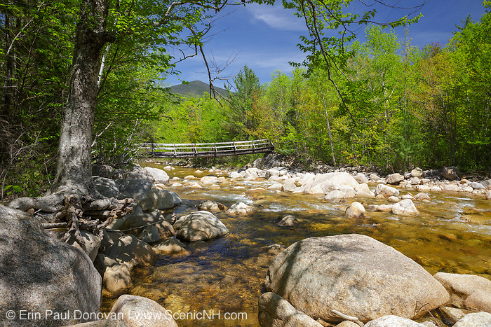 Bridge along the Thoreau Falls Trail in the Pemigewasset Wilderness of the White Mountain National Forest, New Hampshire. This bridge crosses the East Branch of the Pemigewasset River.