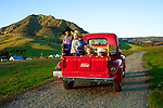 Vintage Ford Truck, San Luis Obispo, California