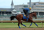 May 29, 2015 American Pharoah, ridden by Georgie Alvarez, had a leisurely gallop and visited the gate at Churchill Downs today.  He flies to New York on June 2.  ©Mary M. Meek/ESW/CSM