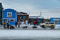 Spectators welcome Nathan Schroeder to Nome as he runs down Front Street on his way toward the finish line in Nome on Thursday March 19, 2015 during Iditarod 2015.  <br /> <br /> (C) Jeff Schultz/SchultzPhoto.com - ALL RIGHTS RESERVED<br />  DUPLICATION  PROHIBITED  WITHOUT  PERMISSION