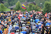3rd July 2021; Oyonnax, Auvergne-Rhône-Alpes, France; TOUR DE FRANCE 2021 UCI Cycling World Tour Stage 8  from Oyonnax to Le Grand Bornand;  <br /> The peloton climbing a hill