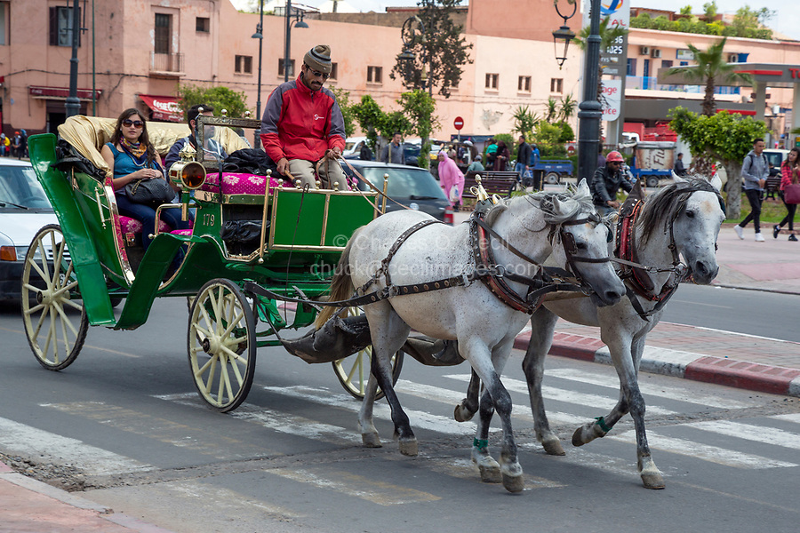 Marrakesh, Morocco.  Horse-drawn Carriage for Tourists.