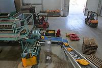 CROATIA, Belica, potato farming at Dodlek Agro / KROATIEN, Belica, Kartoffelanbau bei Dodlek Agro, Kartoffellager und Verpackung
