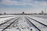 Gedenkfeier zum 69. Jahrestag der Befreiung des KZ Auschwitz-Birkenau