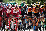 The peloton including Pierre Luc Perichon (FRA) Cofidis during Stage 2 of Criterium du Dauphine 2020, running 135km from Vienne to Col de Porte, France. 13th August 2020.<br /> Picture: ASO/Alex Broadway   Cyclefile<br /> All photos usage must carry mandatory copyright credit (© Cyclefile   ASO/Alex Broadway)