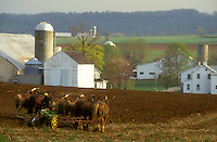 AJ1137, Amish, Pennsylvania, Lancaster County, farmer, Amish farmer plowing a field with a team of horses in scenic Pennsylvania Dutch Country.