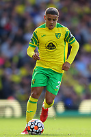 28th August 2021; Carrow Road, Norwich, Norfolk, England; Premier League football, Norwich versus Leicester; Max Aaron of Norwich City shows signs of a neck injury