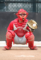 March 25, 2010:  Catcher Ryan Gugel of the Philadelphia Phillies organization during a Spring Training game at the Carpenter Complex in Clearwater, FL.  Photo By Mike Janes/Four Seam Images