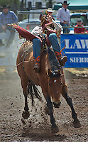 COLLEGE RODEO 2014