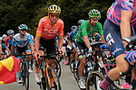 Olympic Champion Greg Van Avermaet (BEL) CCC Team and Green Jersey Peter Sagan (SVK) Bora-Hansgrohe climb Col de Marie Blanque during Stage 9 of Tour de France 2020, running 153km from Pau to Laruns, France. 6th September 2020. <br /> Picture: Colin Flockton   Cyclefile<br /> All photos usage must carry mandatory copyright credit (© Cyclefile   Colin Flockton)