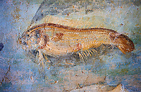 Roman Fresco detail of fishes marine life from the second quarter of the first century AD. (mosaico fauna marina da porto fluviale di san paolo), museo nazionale romano ( National Roman Museum), Rome, Italy. inv. 121462 .