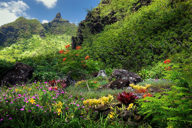 Flowers at Limahuli Garden. Kauai, Hawaii