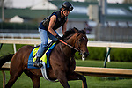 LOUISVILLE, KY - MAY 02: Lone Sailor gallops in preparation for the Kentucky Derby at Churchill Downs on May 2, 2018 in Louisville, Kentucky. (Photo by Alex Evers/Eclipse Sportswire/Getty Images)