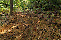 Skidder road, logging operation at the headwaters of Rocky Fork along Blockstand Creek