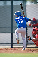Toronto Blue Jays Davis Schneider (17) at bat during an Instructional League game against the Philadelphia Phillies on September 30, 2017 at the Carpenter Complex in Clearwater, Florida.  (Mike Janes/Four Seam Images)