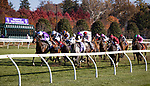 Order of Australia (#15, Australia), Pierre-Charles Boudot up, wins the BC Mile at Keeneland 11.07.20. Winning Owner: Smith, Derrick, Magnier, Mrs. John, Tabor, Michael B. and O'Brien, Anne Marie <br /> Winning Trainer: Aidan P. O'Brien