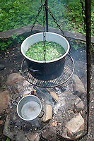 Kräutersuppe über Lagerfeuer, Suppe aus Wildgemüse, Kräuter, Feuer, Outdoor