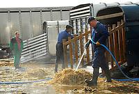 Pressure washing trailers at Beeston mart.