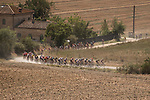 The peloton on the dusty Tuscan tracks during the 2020 Strade Bianche Elite Women running 136km from Fortezza Medicea Siena to Piazza del Campo Siena, Italy. 1st August 2020.<br /> Picture: LaPresse/Marco Alpozzi | Cyclefile<br /> <br /> All photos usage must carry mandatory copyright credit (© Cyclefile | LaPresse/Marco Alpozzi)