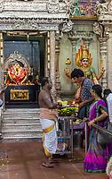 Hindu Temple Sri Vadapathira Kaliammam during Navarathiri Celebrations, Singapore.  Hindu Priest and Worshipers outside Entrance to Inner Sanctuary.