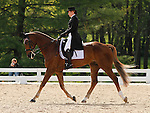 LEXINGTON, KY - APRIL 29: #62 Honor Me and rider Lisa marie Fergusson (CAN) in the warm up ring before their Dressage test in the Rolex Three Day Event, Dressage Day 2, at the Kentucky Horse Park in Lexington, KY.  April 29, 2016 in Lexington, Kentucky. (Photo by Candice Chavez/Eclipse Sportswire/Getty Images)