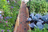 Vegetable garden with herbs and flowers, in raised beds with brick walk pathway leading to house. Cabbages, carrots, beans, chives, cutting flowers, etc intermixed and planted together, growing in beautiful tidy garden