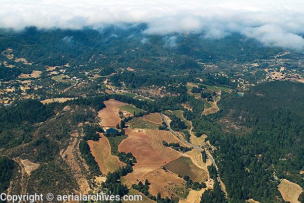 aerial photograph vineyards Mayacamas Mountains fog Sonoma Valley Sonoma County, California
