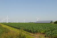 GERMANY agricultural farm with maize field, wind power, photovoltaic and Biogas plant at Nordstrand / DEUTSCHLAND , Maisfeld und<br /> Bauernhof Kurt Maart mit Windenergie, Photovoltaik und Biogasanlage mit Blockheizkraftwerk BHKW zur Strom- und Waermeerzeugung auf Nordseeinsel Nordstrand