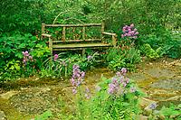 Handmade wooden bench from sticks sits in shade garden among columbine, Dames rocket and ferns