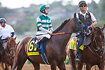 DEL MAR,CA-AUG 17: Higher Power,ridden by Flavien Prat, is in the post parading for  the Pacific Classic at Del Mar Race Track on August 17,2019 in Del Mar,California. Kaz Ishida/Eclipse Sportswire/CSM