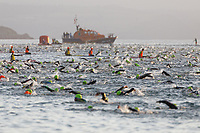 Pictured: Swimmers set off from the North Beach in Tenby. Sunday 15 September 2019<br /> Re: Ironman triathlon event in Tenby, Wales, UK.