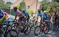 Jasper Stuyven (BEL/Trek-Segafredo) riding for Team Belgium today<br /> <br /> 70th Halle Ingooigem 2017 (1.1)<br /> 1 Day Race: Halle > Ingooigem (201km)