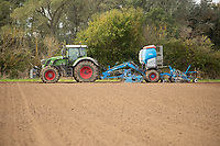 11-10-2021 Drilling Winter cereals in Lincolnshire <br /> ©Tim Scrivener Photographer 07850 303986<br />      ....Covering Agriculture In The UK....