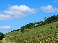 Niederwalddenkmal und Weinberge bei Rüdesheim, Hessen, Deutschland, Europa<br /> Niederwald monument and vineyards near Rüdesheim, Hesse, Germany, Europe