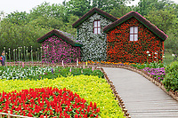 Yangzhou, Jiangsu, China.  Houses Covered in Flowers in the Flower Garden in the Slender West Lake Park.