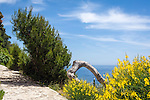 France, Provence-Alpes-Côte d'Azur, peninsula Cap Ferrat between Villefranche-sur-Mer and Beaulieu-sur-Mer, Saint-Jean-Cap-Ferrat: seaside walk along Promenade des Fossettes   Frankreich, Provence-Alpes-Côte d'Azur, Halbinsel Cap Ferrat zwischen Villefranche-sur-Mer und Beaulieu-sur-Mer, Saint-Jean-Cap-Ferrat: auf der Promenade des Fossettes immer am Meer entlang