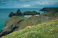 Kynance Cove near Lizard, on the Lizard Peninsula, Cornwall
