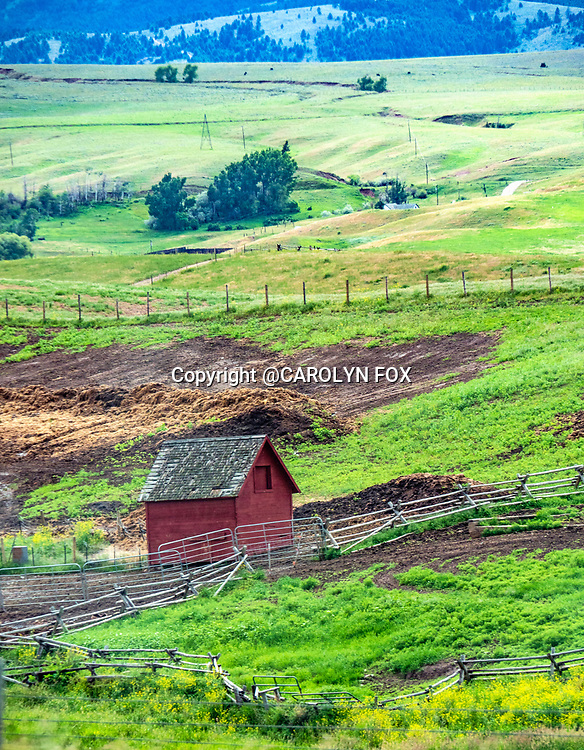 A small barn sits in a field in Montana.