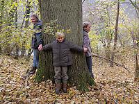 Familie umfasst alte Eiche, Stamm, Baumstamm, Eltern mit ihrem Kind, Quercus robur