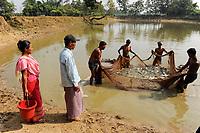BANGLADESH, Madhupur, Garo people,  micro financed fish pond for income generation and poverty reduction /Bangladesch, Region Madhupur, Unterstuetzung von Garo Familien mit Kleinkrediten und Trainingsprogrammen zur Existenzsicherung , Garos sind eine christliche u. ethnische Minderheit, mikrofinanzierter Fischteich von Herrn Ninto Dalboth (mit blauem Hemd und Muetze) und Frau Monda Nokrek , links mit Eimer