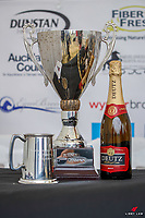 Shiny things: 2020 NZL-Puhinui International Three Day Event. Puhinui Reserve. Auckland. Sunday 13 December. Copyright Photo: Libby Law Photography