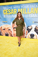 """LOS ANGELES - JULY 30: Alex Meneses  attends the premiere event for National Geographic's """"Cesar Millan: Better Human, Better Dog"""" at the Westfield Century City Mall Atrium on July 30, 2021 in Los Angeles, California. (Photo by Stewart Cook/National Geographic/PictureGroup)"""