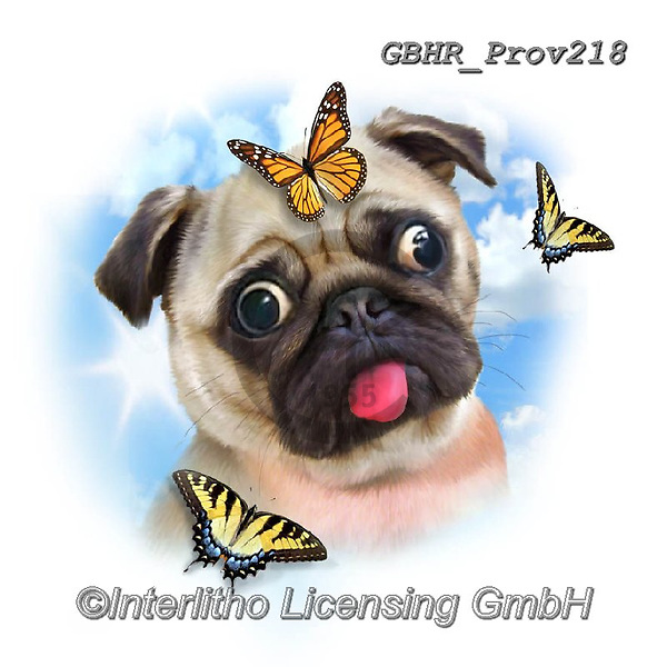 Howard, REALISTIC ANIMALS, REALISTISCHE TIERE, ANIMALES REALISTICOS, paintings+++++,GBHRPROV218,#a#, EVERYDAY ,selfies