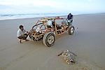 Dead Loggerhead & Dune Buggie