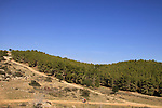 Israel, Shephelah, cycling at the foothill of Givat Gad (Gad Hill)