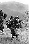 Pan American Highway, indigenous native Indians carry huge packs of wood on their backs walking along the side of the PAH. Guatemala Central America. 1973.