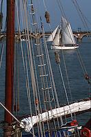 Europe/France/Aquitaine/33/Gironde/Bordeaux: Navigation à voile sur la Garonne, en fond le pont de pierre lors de la fête du fleuve - A l'arrière plan le Pont de Pierre