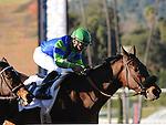 February 12, 2012.Vision in Gold riden by Joel Rosario, wins The Santa Maria Stakes at Santa Anita Park, Arcadia, CA..