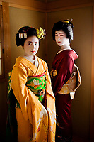 """Komomo, Apprentice Maiko and Yachiho-san, Geisha in Kyoto, Japan<br /> <br /> Geisha are a part of a highly respected traditional profession in cultural Japan that dates back to the 17th century. Modern geisha today are a class of highly trained artistic female dance and music performers, hired to entertain and serve their guests at teahouses and restaurants. In the early 1900's this was a thriving business of about 80,000 women. Today there are less than 2000 left in the industry.<br /> Komomo, (left), has long dreamed of becoming a geisha.  """"I come from a regular working family. I was enchanted with beautiful geisha from the first time I saw them in Kyoto when I was a young girl. They seemed to be the definition of style and sophistication. Our family was transferred to China for my father's job but I wanted to always wear a kimono, to proudly represent my country and culture. When I found a teacher in Kyoto she told me training is so tough that only one of three girls make it. I told her I would be one of the three. I was fifteen years old when I left my parents to return to Japan and live in this okiya house with the other girls. As part of my training I'm committed twenty-four hours a day, seven days a week for about five years, studying the formal arts such as dance, music, poetry. I love what I do. My job is to offer hospitality and to care for my customers hearts."""""""